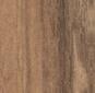 NU 795 (wilder nussbaum)